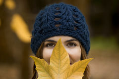 Enjoying the autumn Royalty Free Stock Photography