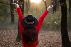 Enjoying an autumn day in the forest stock images
