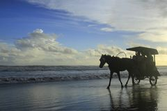 Horse Carriage on The Beach Parangtritis. Enjoying the beach breeze and taking a look into the middle of the ocean and feeling the sensation above the horse Royalty Free Stock Photos