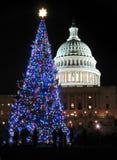 Enjoying the Christmas Tree Royalty Free Stock Images