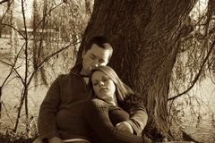 Enjoying each other's company and love. Young couple sitting under a tree Stock Photos