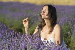 Enjoying the fragrance Stock Photography