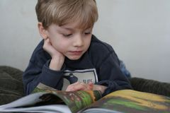 Enjoying a Good Book. A little boy is looking at the pictures in his book royalty free stock image