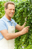 Enjoying his work with plants. Stock Photography