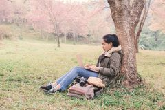 Enjoying moment woman backpacker using laptop in beautiful forest background. Relax time and work anywhere concept  ,color of vintage tone and soft focus Royalty Free Stock Images