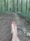 Enjoying nature woods fores. Taking a brake on tje forst trail Royalty Free Stock Photo