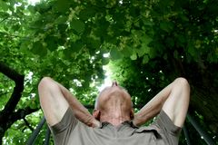 Free Enjoying Pension Time In A Shadow Of Lime Tree Stock Images - 117322394
