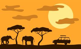 Elephants in Savannah and Safari Car at Sunset Flat Style. Enjoying safari trip in Africa Stock Photography