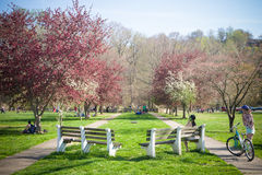 Enjoying Spring Activities At The Park Royalty Free Stock Photography