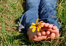 Enjoying Summer. Barefoot girl holding a flower between her toes outside in the grass Stock Photography