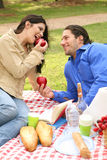 Enjoying Summer Picnic Together. Two young couple sharing fruits on summer picnic together stock photos
