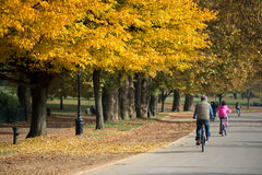 Enjoying a sunny day in Hyde Park, London Royalty Free Stock Images