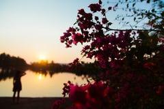 Enjoying the sunset. Girl enjoying the sunset by the sea Stock Image