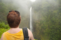 Enjoying tropical waterfall at Big Island of Hawaii on a rainy d. Woman looks at gorgeous Akaka falls under tropical rain on Big Island of Hawaii Stock Image