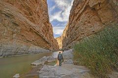 Enjoying the View of Desert Canyon Royalty Free Stock Photo