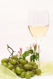 Enjoying white-wine Stock Image
