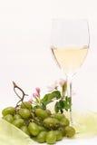 Enjoying white-wine Stock Image