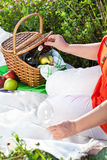 Enjoyng lunch, picnic outdoors Stock Images