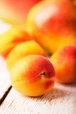 enkel aprikos Fotografering för Bildbyråer