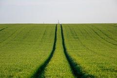 Enkel bestrooid sleutelkoord van gras stock afbeelding