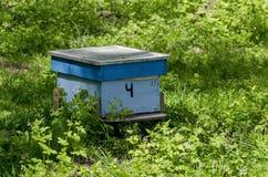 Enkel bikupa i skog Arkivbild