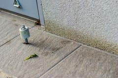 Enkel blad och dörrpropp Royaltyfri Fotografi