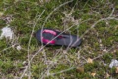 Enkel bruten sko i jordningen Arkivfoton