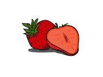 Enkel dragen illustrationhand för jordgubbe vektor illustrationer