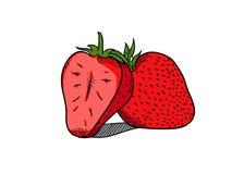 Enkel dragen stil för jordgubbe hand vektor illustrationer