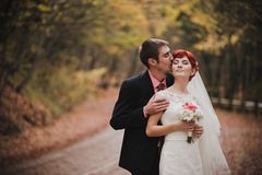 Enkel echtpaar het stellen in een de herfstpark royalty-vrije stock fotografie
