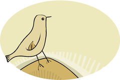 Enkel fågel Arkivfoton