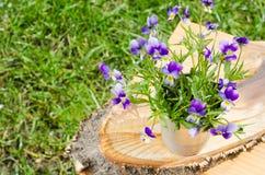 enkel Geregend Boeket van de lentebloemen in een vaas op een besnoeiingsboom Kaart met de lentebloemen Royalty-vrije Stock Foto
