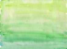 Enkel grön vattenfärgbakgrund Royaltyfri Bild