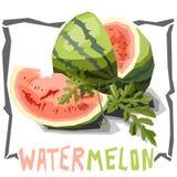 Enkel illustration för vektor av vattenmelon Arkivbild