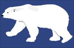 Enkel isbjörn Fotografering för Bildbyråer