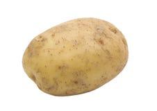 enkel isolerad potatis royaltyfria bilder