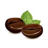Enkel kaffeböna med bladet som isoleras på vit Arkivfoto