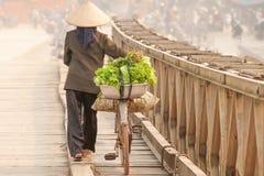 enkel livstid Bakre sikt av vietnamesiska kvinnor med cykeln över träbron Vietnamesiska kvinnor med den Vietnam hatten, grönsak p arkivbilder