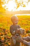 Enkel lycka lycklig barndom S?ta barndomminnen Barnlek med hunden f?r yorkshire terrier Litet barnpojken tycker om arkivbilder