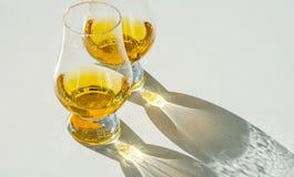 Enkel maltwhisky i exponeringsglaset, lyxigt smaka exponeringsglas arkivfoto