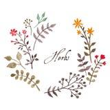 Enkel och gullig blom- oval krans vektor illustrationer