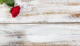 Enkel röd ros som vilar på vitt trä Royaltyfria Bilder