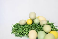 Enkel ren bild för kulöra ägg på grönt gräs på vita Backgrou Royaltyfri Foto