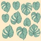 Enkel sömlös modell av sidamonsteragräsplan royaltyfri illustrationer