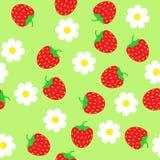 Enkel schematisk röd jordgubbe och vita blommor på en gräsplanbac Royaltyfria Bilder