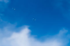 enkel tvål för bubbla Arkivfoto