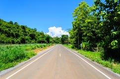 Enkel väg i skogen Royaltyfri Foto