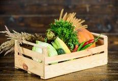 Enkel van tuin De verse groenten van de leveringsdienst van landbouwbedrijf Doos of mand de houten achtergrond van oogstgroenten royalty-vrije stock foto's