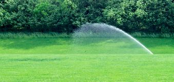 Enkel vattenspridare på gräsmatta Arkivbilder
