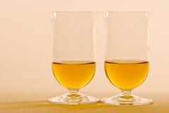 enkel whiskey för malt arkivbild